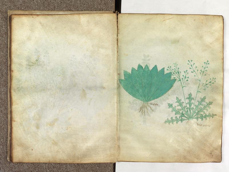 PARIS, Bibliothèque de l'Ecole des Beaux-Arts, Ms.Mas 0116, f. 016v - 017