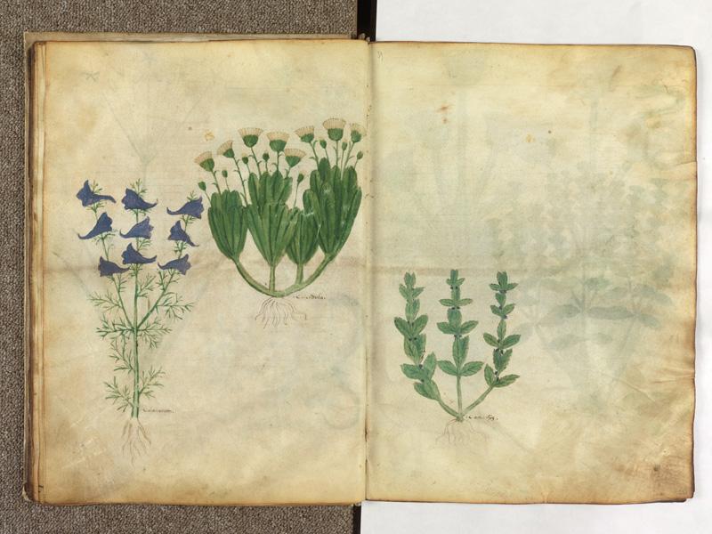 PARIS, Bibliothèque de l'Ecole des Beaux-Arts, Ms.Mas 0116, f. 019v - 020