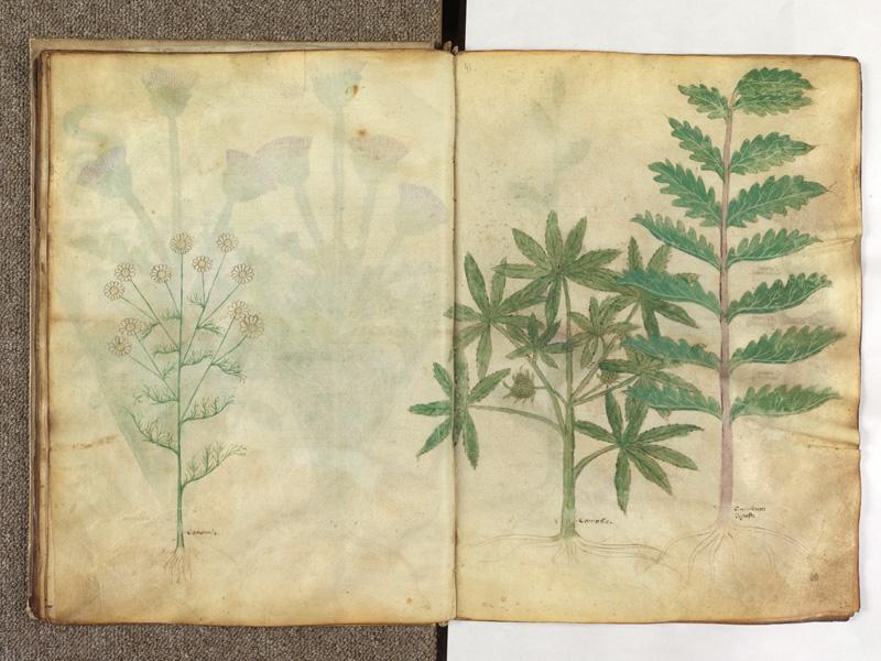 PARIS, Bibliothèque de l'Ecole des Beaux-Arts, Ms.Mas 0116, f. 021v - 022