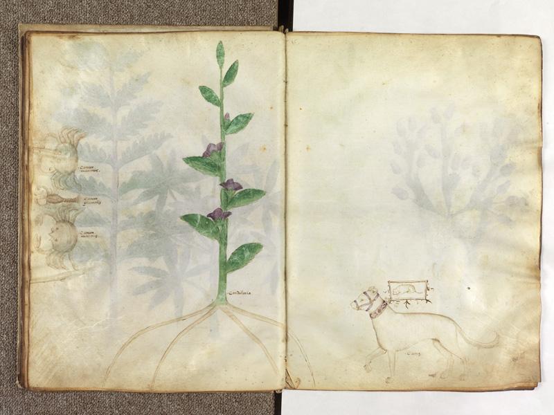 PARIS, Bibliothèque de l'Ecole des Beaux-Arts, Ms.Mas 0116, f. 022v - 023