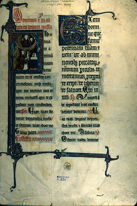 Reims, Bibl. mun., ms. 0230, f. 001 - vue 1