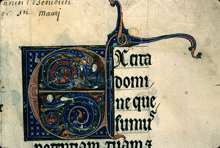 Reims, Bibl. mun., ms. 0230, f. 001 - vue 3
