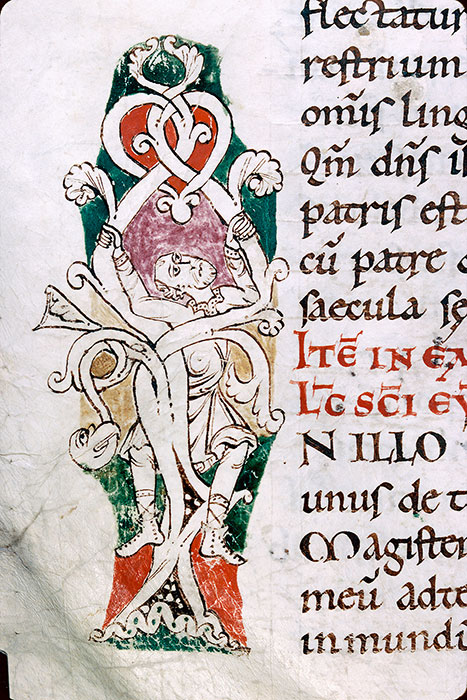 Reims, Bibl. mun., ms. 0294, f. 223v - vue 2