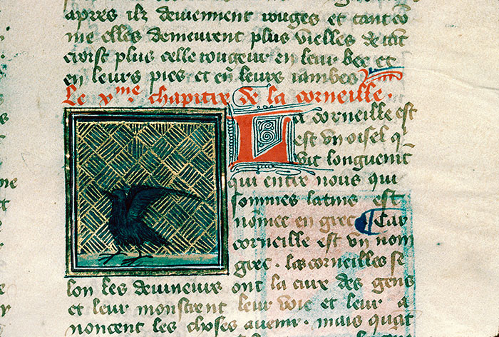 Reims, Bibl. mun., ms. 0993, f. 154 - vue 2