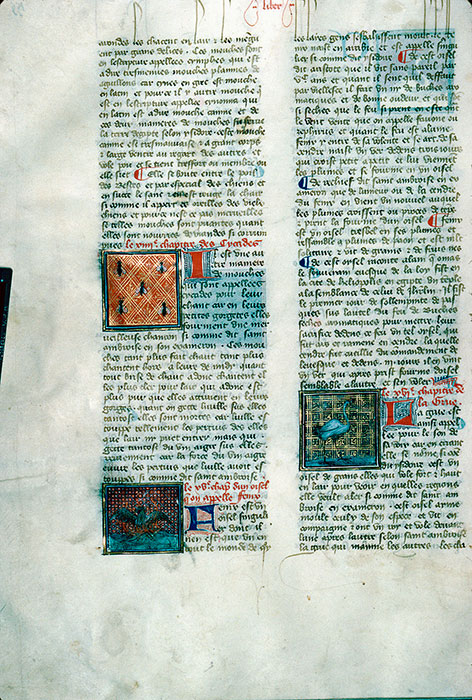 Reims, Bibl. mun., ms. 0993, f. 155v - vue 1
