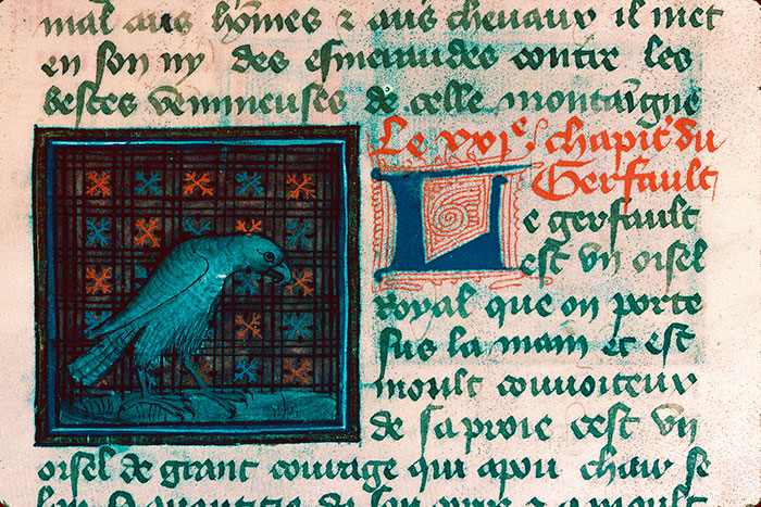 Reims, Bibl. mun., ms. 0993, f. 157 - vue 1