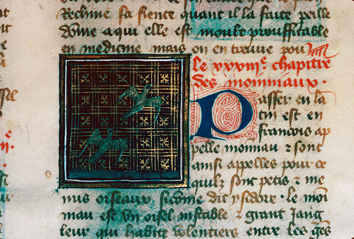 Reims, Bibl. mun., ms. 0993, f. 159 - vue 2