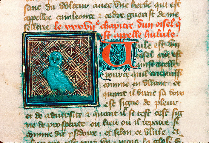 Reims, Bibl. mun., ms. 0993, f. 160v - vue 1
