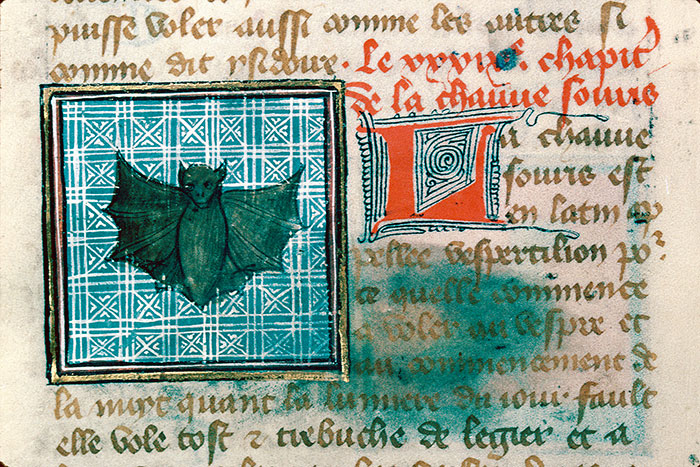 Reims, Bibl. mun., ms. 0993, f. 160v - vue 3