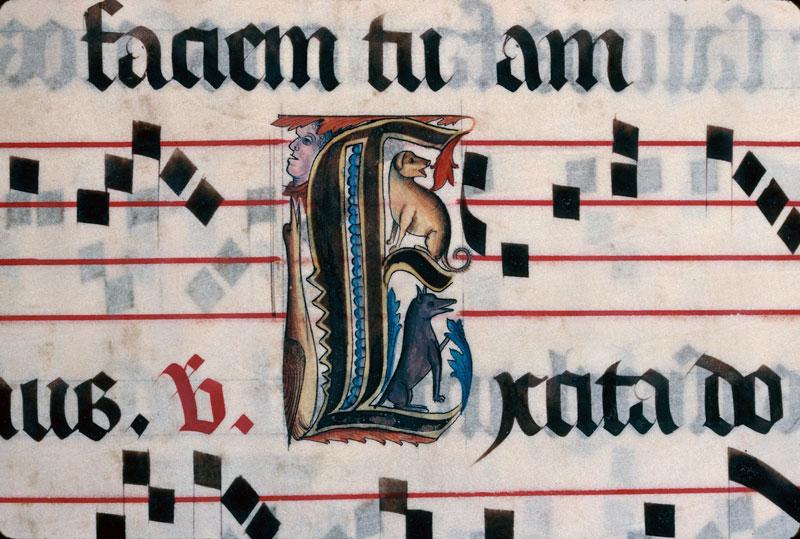 Saint-Dié, Bibl. mun., ms. 0074, f. 011