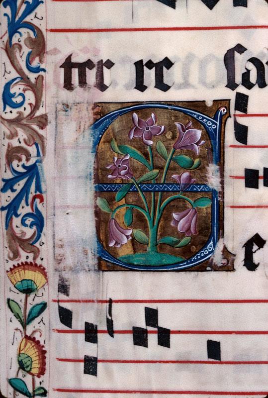 Saint-Dié, Bibl. mun., ms. 0074, f. 026