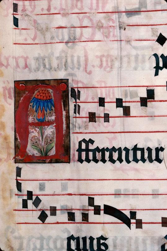 Saint-Dié, Bibl. mun., ms. 0074, f. 246