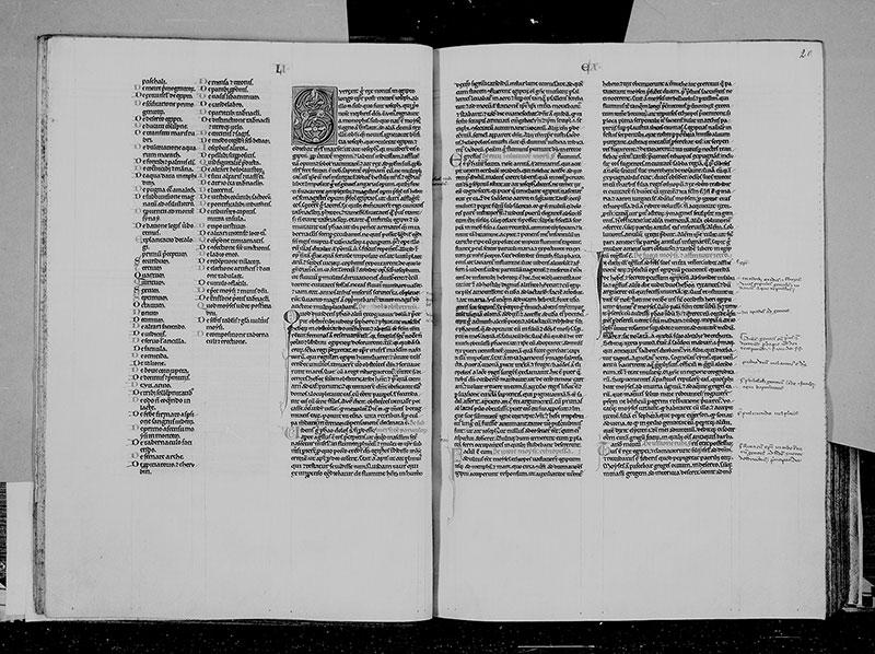 TROYES, Bibliothèque municipale, 0451, f. 019v - 020